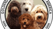 What is so special about GANA registered puppies?