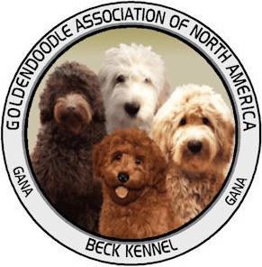 Goldendoodle Breeder, Goldendoodle Puppies