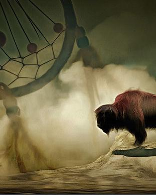 buffalo-2923592_1920.jpg