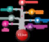 Codesenvolvimento site_ENG.png