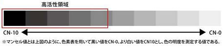 活性グラフ.jpg