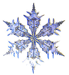 passion lab snowflake_11