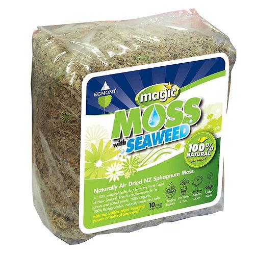 Magic  Spagnum Moss 10L