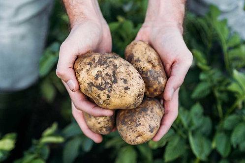 Jersey Benne Potato 1kg