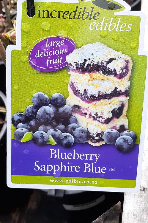 Blueberry Sapphire Blue 3L