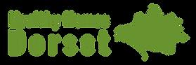 Healthy Homes Dorset - Logo banner trans