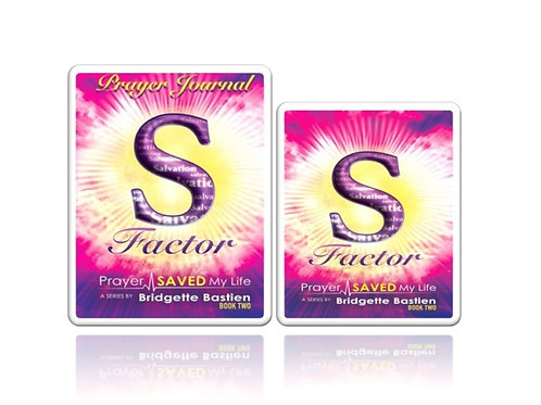 S-Factor Bundle: Book & Prayer Journal