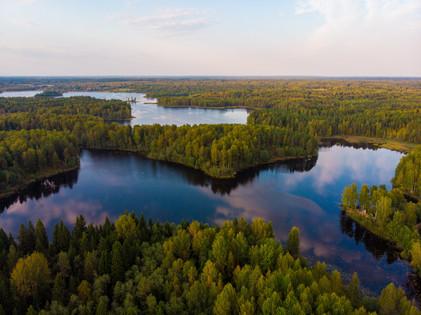 Pure Michigan Great Lake State