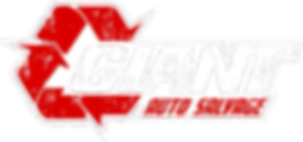 temp giant logo.png