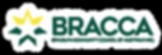 Asset 9LOGO BRACCA .png