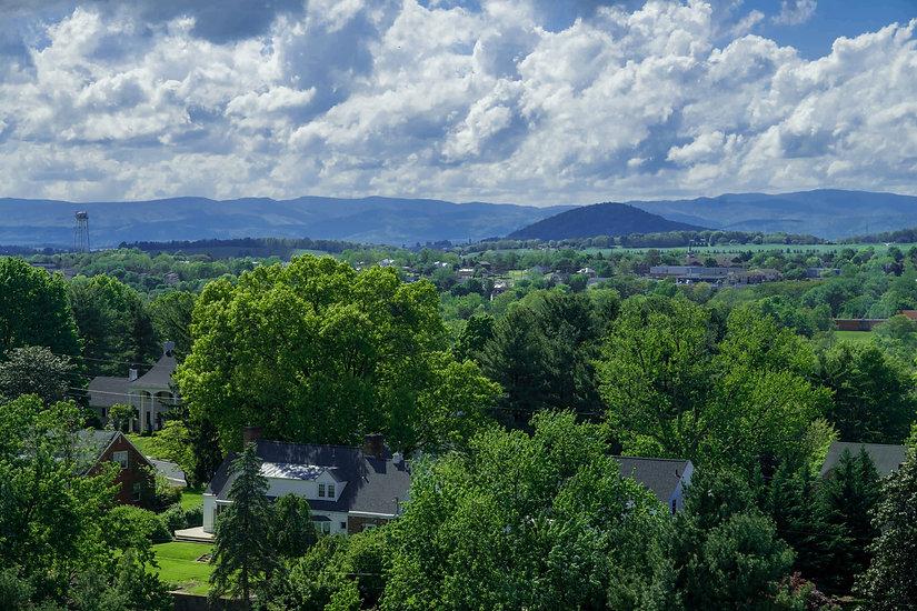 234596 Scenic View Stock - Mole Hill Spr