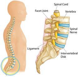 Lumbar Disc Disorders