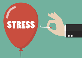 Top 5 things Dr. Kristen Does to Manage Stress