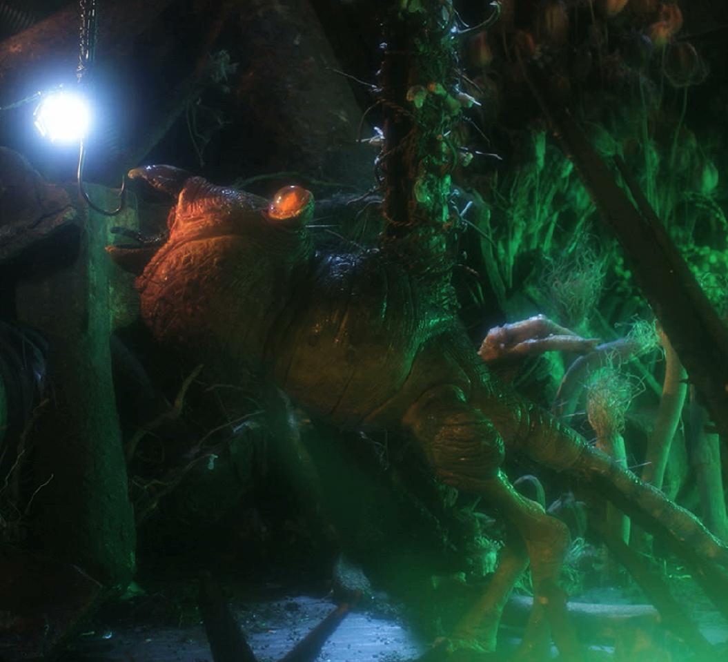 A creature investigates the realm.