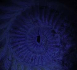 The diving bell descends deeper.