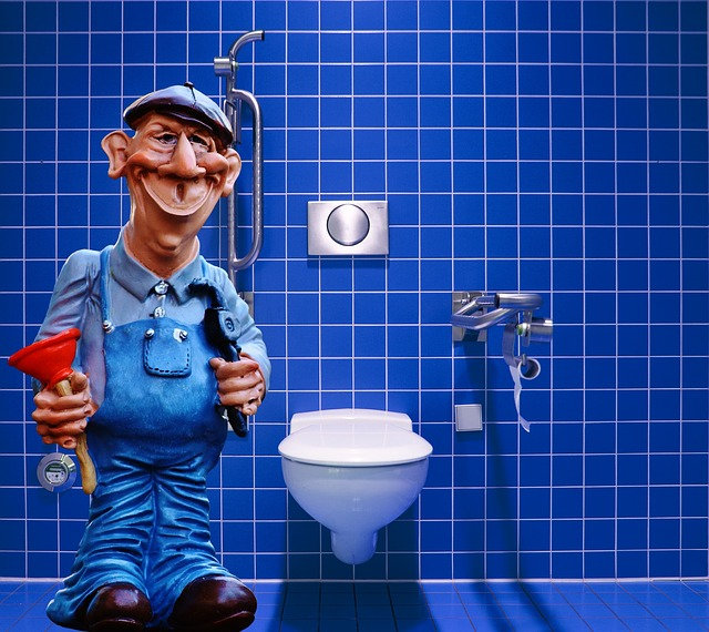 Other Plumbing Service