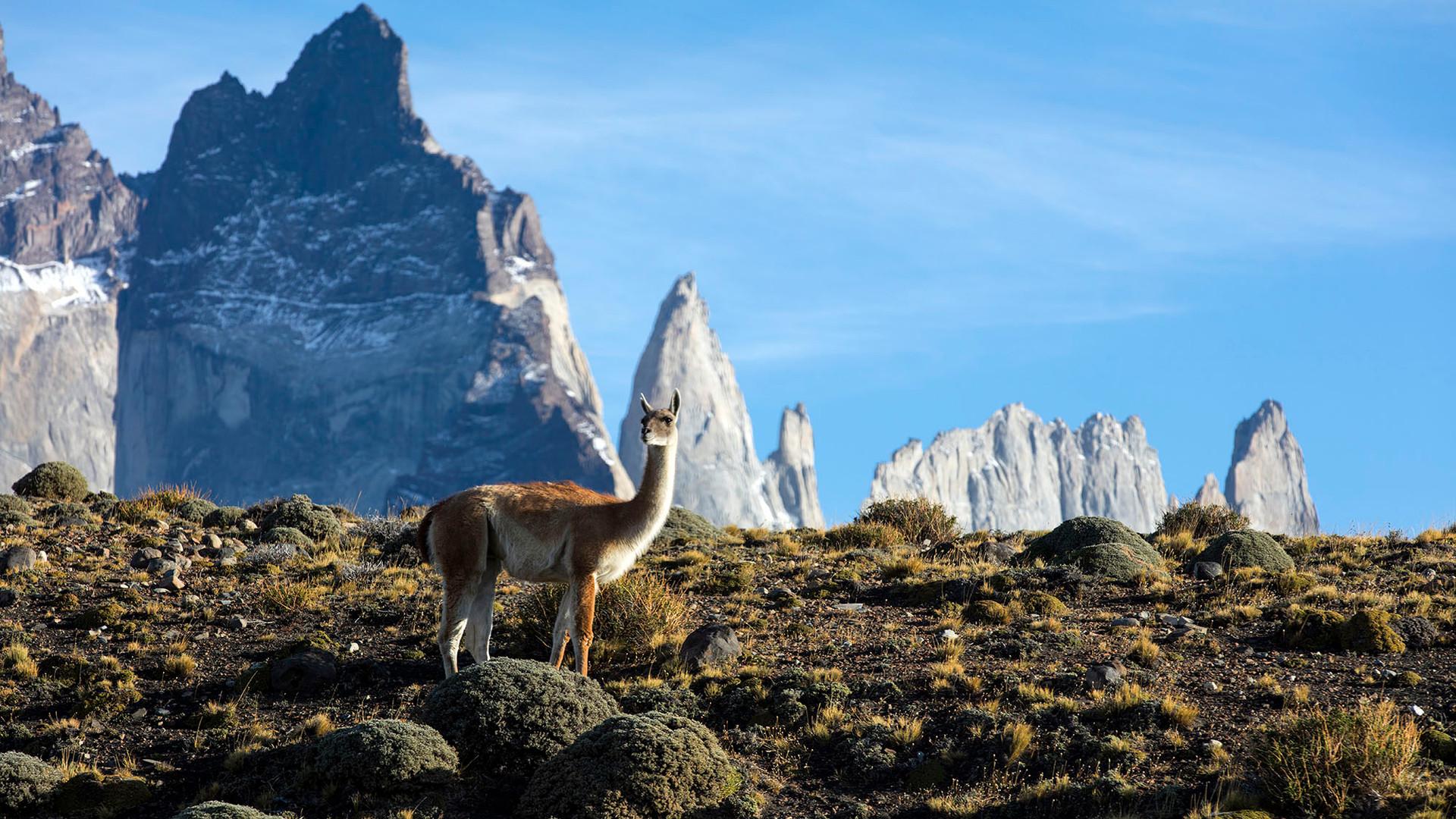 Rodrigo Vega Fotografo _Parque Nacional