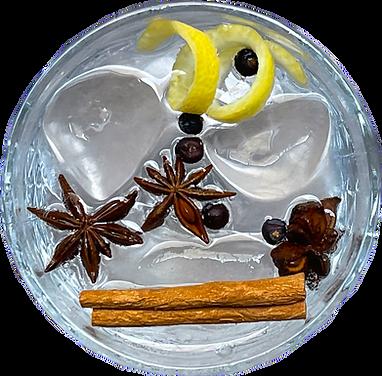 gin tonic.png