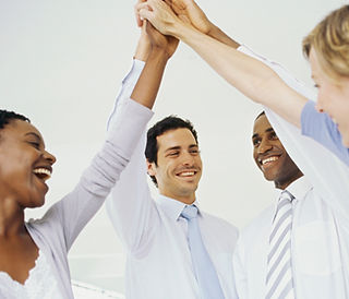 Project Management, Successful Team