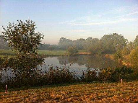 Herbstliche Stimmung am Wasserhindernis C7 im Golf-Park Sülfeld. Natur pur zwischen Bad Oldesloe und Hamburg