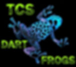 High Quality Captive Bred Dart Frogs, Feeders, Vivarium Supplies, Terrarium Plants