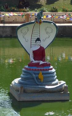 Gautama Buddha meditiert während er von einem Naga angegriffen wird. Buddhistisches Meditation Seminar mit Mahametta