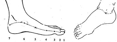 Metamorphose Fuesse. Wellness Massagen und Behandlungen mit May in München