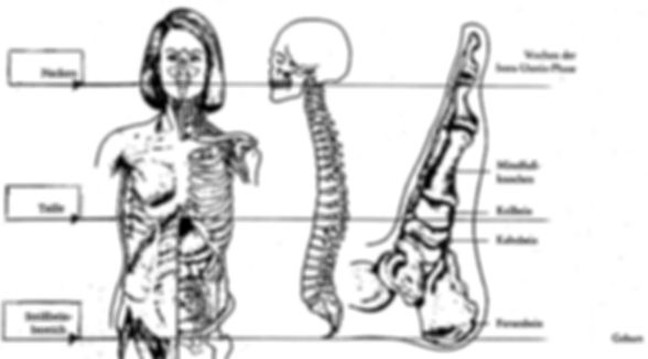 Tratamientos en Munich del método metamórfico/prenatal