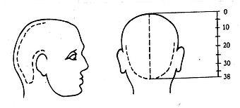 Metamorphose Kopf. Wellness Massagen und Behandlungen mit May in München
