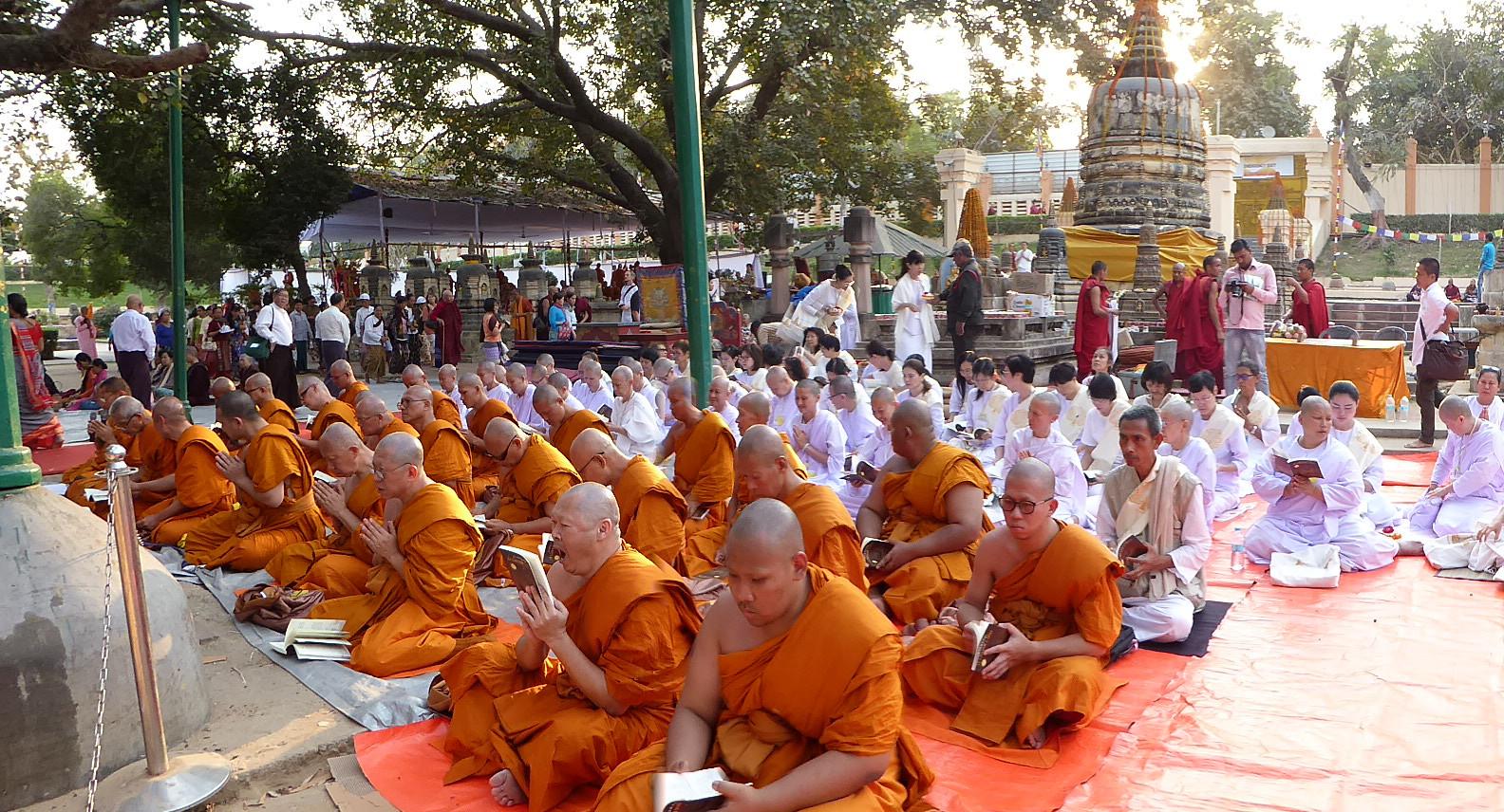 Beten und meditieren in Bodhgaya