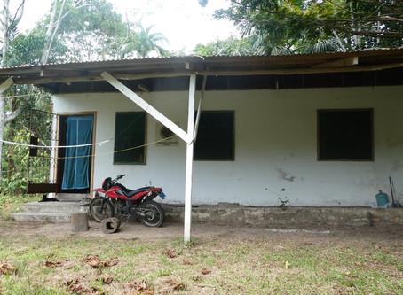Una segunda oportunidad para la ayahuasca