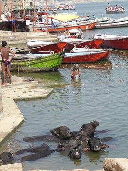Heilige Gewässer von Varanasi, der Ganges. MahaMetta spirituelle Reisen