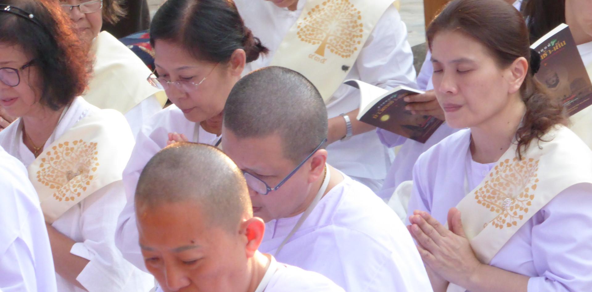 Thai buddhist women praying under the Bodhi Tree