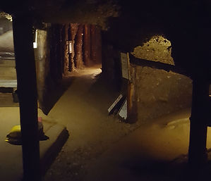 Tunnel under the pyramids in Bosnia. Maha Metta and Geoviva Travels