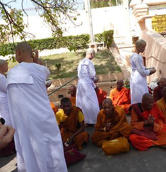 Metta - Liebe und Mitgefühl. Buddhistisches Meditation Seminar mit Mahametta