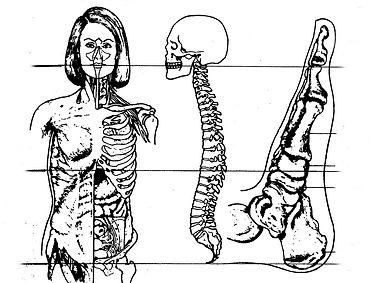 Metamorphische-pränatale Methode. Wellness Massagen und Behandlungen mit May in München
