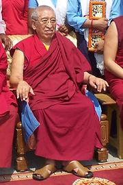 Sarnath'10 Thrangu Rinpoche