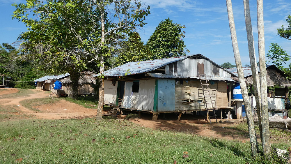 Hut in the Yahuas community of Padre Cocha
