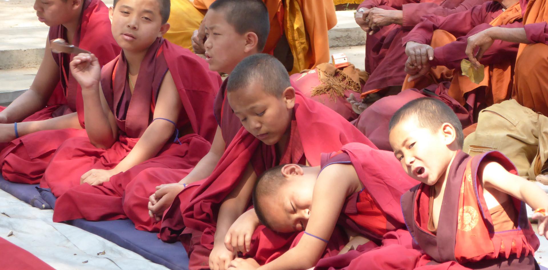 Kleine tibetische Mönche in Bodhgaya