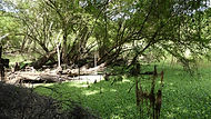 Bioesfera de Calakmul. Viajes Mahametta