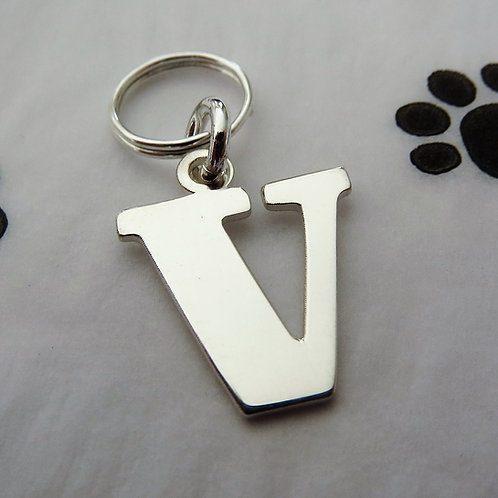 'V' Pendant