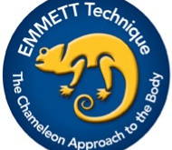What is EMMETT Therapy?