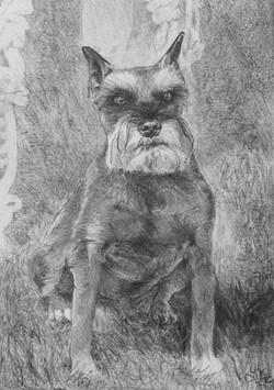 Lefty, 2nd portrait