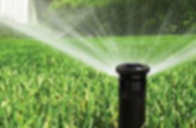 irrigation-16.jpg
