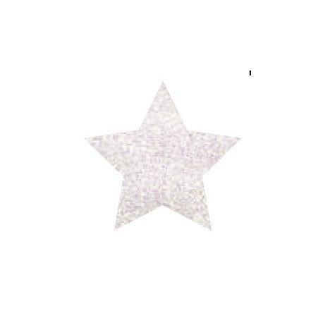 Glitter Powder Pen Holográfico BLANCO 10gr.