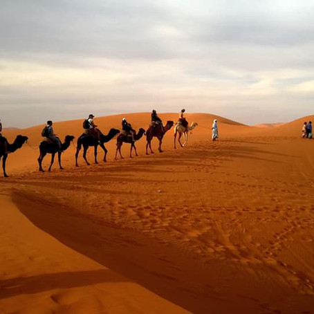 In the Desert Place