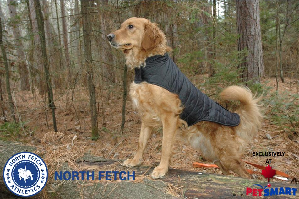 North Fetch PetSmart