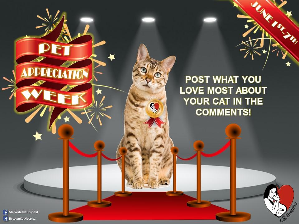 Pet Apprciation Week