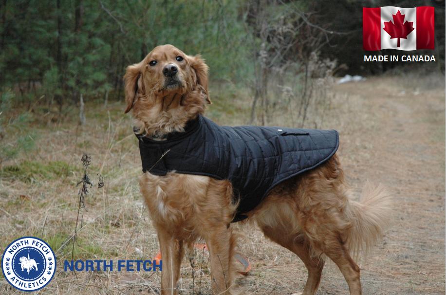 North Fetch