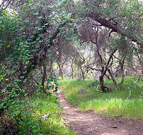 Preserve Trail Home.jpg